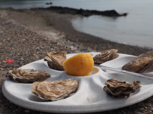 where-to-go-in-bretagne-cancale-oysters
